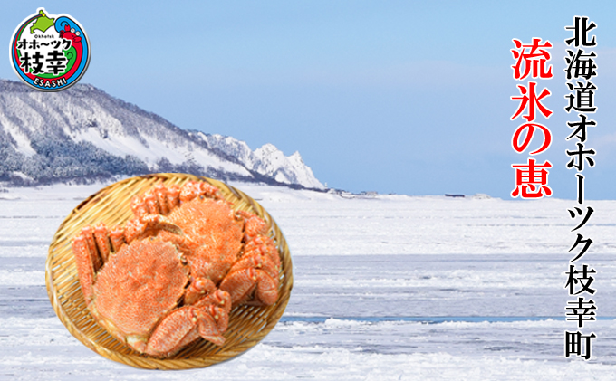 北海道枝幸町のふるさと納税 【枝幸毛がに】海洋食品の毛がに 中型(400~500g)×3尾