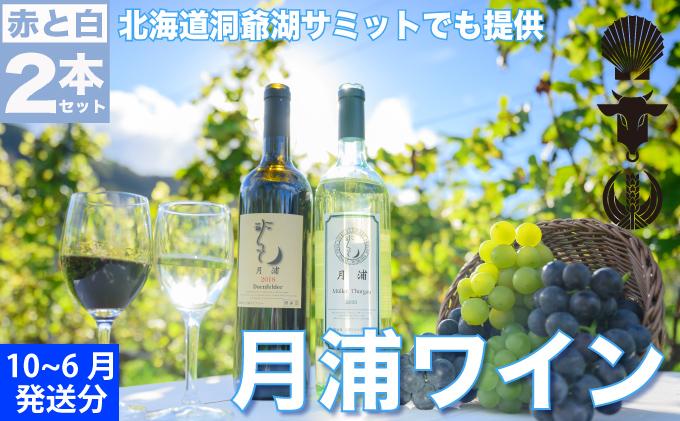 北海道洞爺湖町のふるさと納税 月浦ワイン2本セット(白・赤750ml)