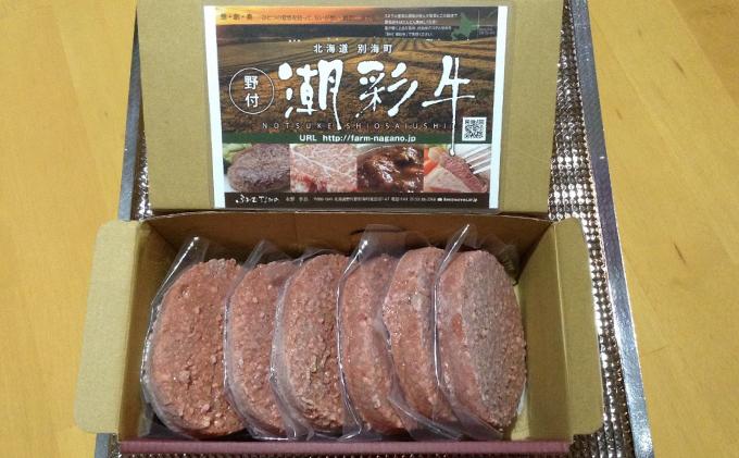 北海道別海町のふるさと納税 北海道別海産 潮彩和牛100%丸ごとこだわりハンバーグ100g×6