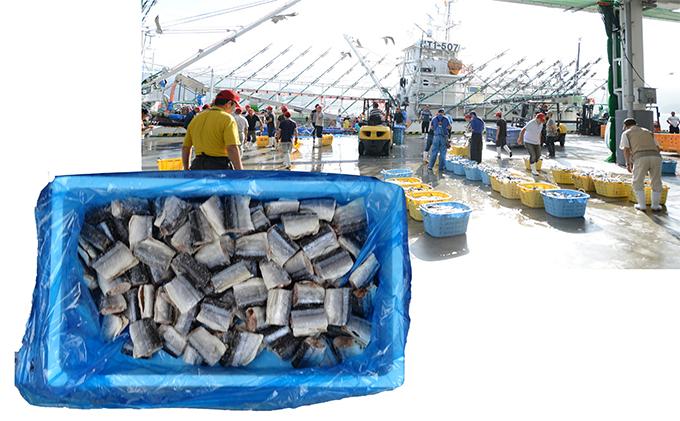 岩手県大船渡市のふるさと納税 天日干し骨抜き一口サンマ干物2kg 三陸大船渡産