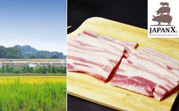 宮城蔵王産  牧場直送 JAPAN X 豚バラ・焼肉用/計2kg