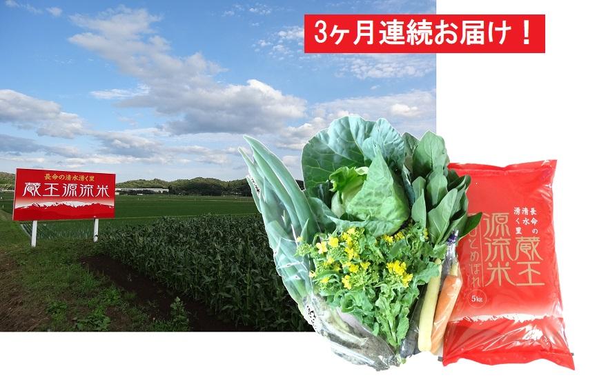 ふるさと納税の返礼品 蔵王源流米5kg&野菜果物セット