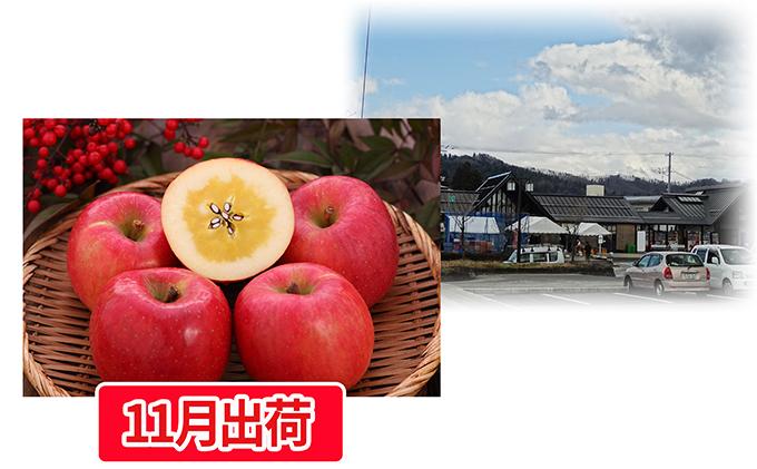大江町産 高徳りんご約2kg
