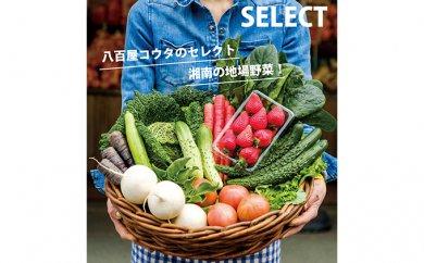 神奈川県平塚市のふるさと納税 【平塚よりお届け】湘南産 地場野菜・フルーツ 詰合せ