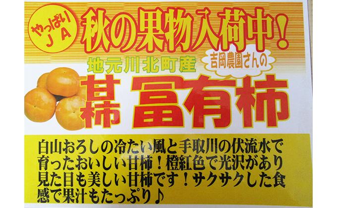 石川県川北町のふるさと納税 【川北町産】吉岡さんちの富有柿 約4kg
