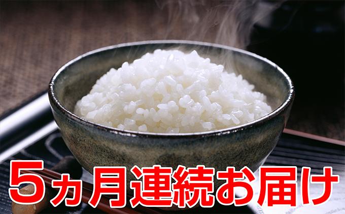 【5ヶ月連続】信州安曇野松川村 乳川の里産 特別栽培米コシヒカリ 10kg