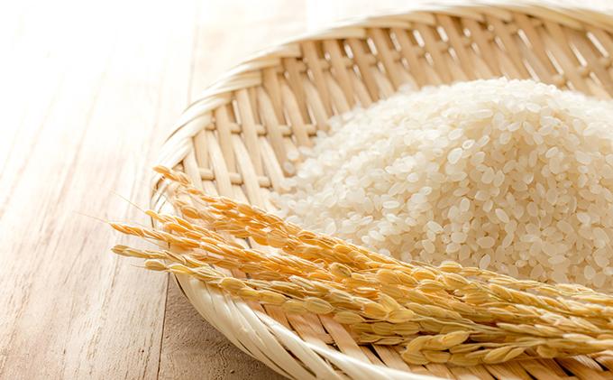 静岡県湖西市のふるさと納税 令和2年産新米 ミルキークイーン 10kg 無洗米