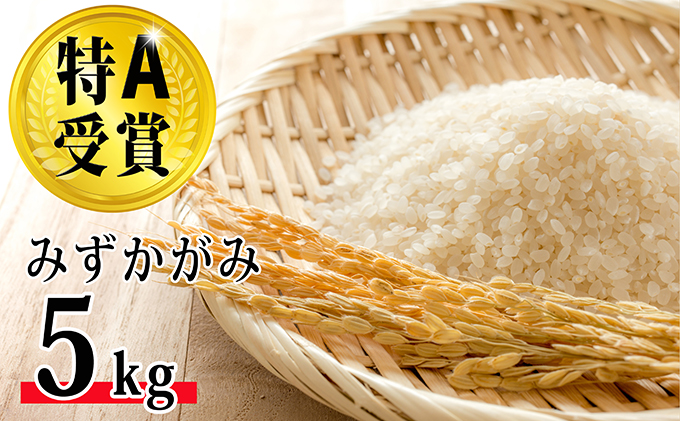 滋賀県豊郷町のふるさと納税 特A受賞 平成30年産環境こだわり近江米みずかがみ5kg