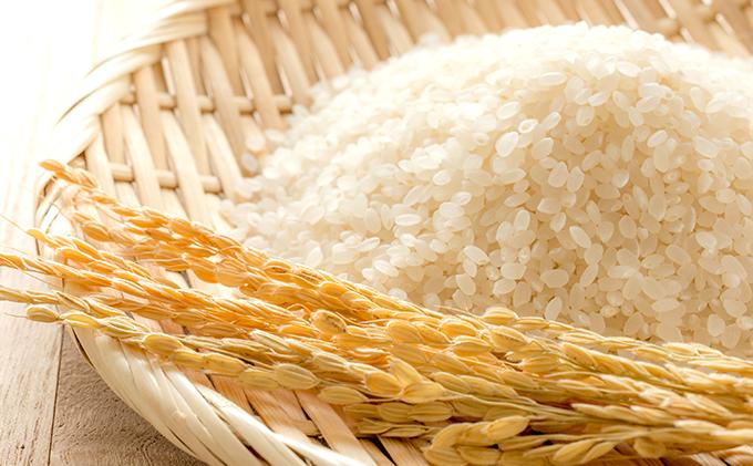 (無洗米)特別栽培米 【ヒノヒカリ5kg白米】