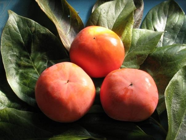 富有柿 3.5kg