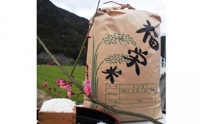 おすすめの返礼品 【令和元年新米予約】高原さんのもち米(玄米)10kg※クレジット決済のみ