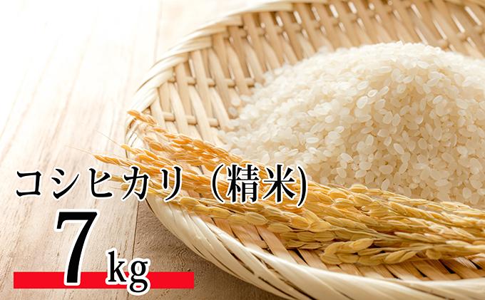 令和元年新米!SWANの特選米(精米7kg)コシヒカリ