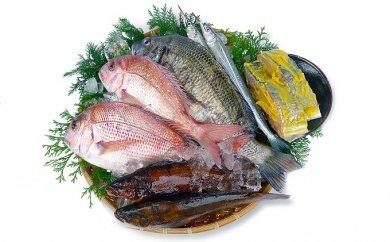 瀬戸内海産の四季折々の獲れたて地魚の詰め合わせ