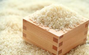 ふるさと納税の返礼品 ふるさと応援特別米 平成30年産 香川県産 白米「あきさかり」2kg