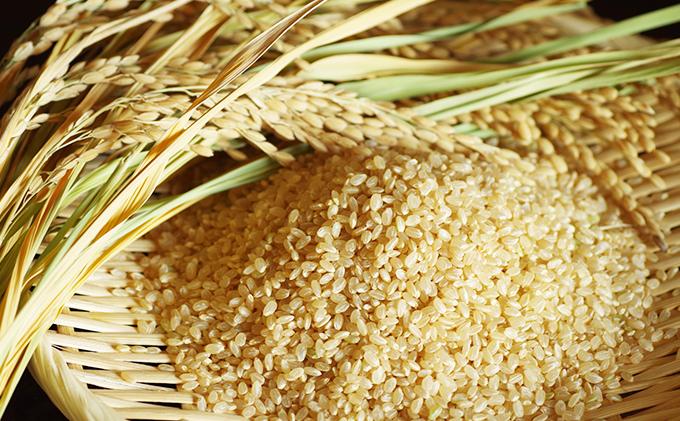 土佐天空の郷(ヒノヒカリ)30kg 一等米 玄米